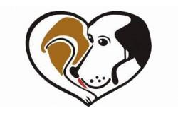 """Благотворительная поддержка фонду """"Помощь бездомным собакам"""""""